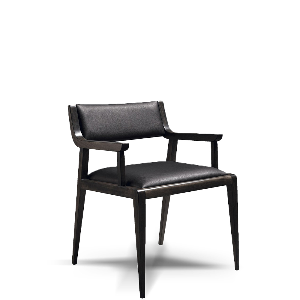 contemporary dining chairs, modern dining chair